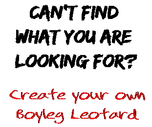 Can't find  what you are  looking for? Create your own  Boyleg Leotard