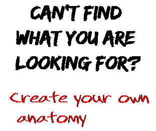 Can't find  what you are  looking for? Create your own  anatomy