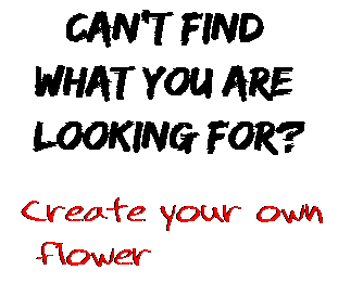Can't find  what you are  looking for? Create your own  flower