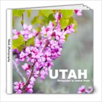 Utah Photos Book - 8x8 Photo Book (20 pages)