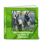 6 x 6 Platero Project - 6x6 Deluxe Photo Book (20 pages)