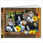 Sunflower - 7x5 Photo Book (20 pages)