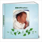 BOSEN 60 - 8x8 Photo Book (20 pages)