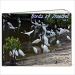 Saniibel 3g - 11 x 8.5 Photo Book(20 pages)