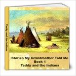Teddy and the Indians - 8x8 Photo Book (39 pages)