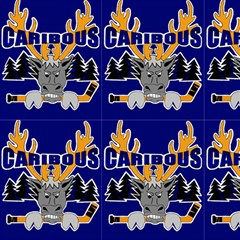 Caribous Minor Hockey (blue) Fabric