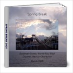 Spring Break 2005 - 8x8 Photo Book (20 pages)