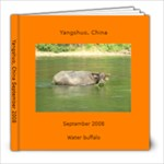 Yangshuo, China Sept 2008 - 8x8 Photo Book (20 pages)
