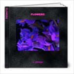 aaa - 8x8 Photo Book (20 pages)