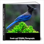 30 Page 8x8 - 120208 - 8x8 Photo Book (30 pages)
