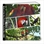 Birds of the Osa Peninsula - 8x8 Photo Book (30 pages)