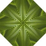 Exotic Palm Fronds - Folding Umbrella
