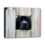 Moose Fence - Canvas 10  x 8  (Stretched)