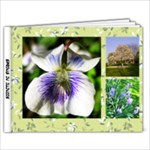 spring in illinois - 9x7 Photo Book (20 pages)