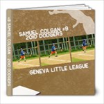 2010 Dodgers! - 8x8 Photo Book (39 pages)