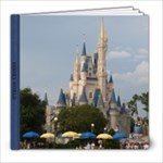 disney book complete - 8x8 Photo Book (20 pages)