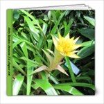 Selby Gardens - 8x8 Photo Book (20 pages)