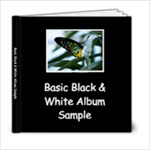 Basic Black & White Sample Album - 6x6 Photo Book (20 pages)