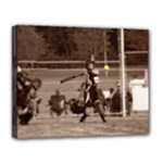 sball3 - Canvas 14  x 11  (Stretched)