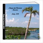 2010 Playa del Carmen Mexico - 8x8 Photo Book (39 pages)