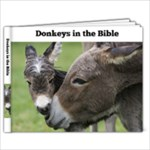 donkeys - 9x7 Photo Book (20 pages)