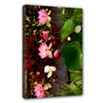 Lily canvas - Canvas 18  x 12  (Stretched)