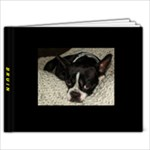 Bruin - 9x7 Photo Book (20 pages)