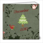 December 2010 - 8x8 Photo Book (39 pages)