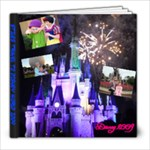Disney World 2009  - 8x8 Photo Book (39 pages)