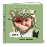 Year in Review 8x8 book to copy - 8x8 Photo Book (20 pages)