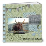 Stone Mountain - 8x8 Photo Book (30 pages)