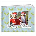 11 x 8.5 (20 pages): Christmas Book - 11 x 8.5 Photo Book(20 pages)