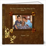 Trip to SL - 2011 - 12x12 Photo Book (60 pages)