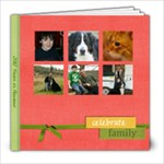 2012 Year in Review - 8x8 Photo Book (20 pages)