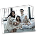 A Sweet Lovely Family 2011 (V.2L) - 7x5 Deluxe Photo Book (20 pages)
