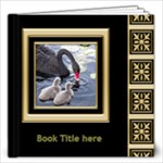 Black and Gold 12x12 Book (60 Pages) - 12x12 Photo Book (60 pages)