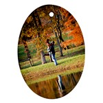 Oval Pond - Ornament (Oval)