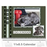 Green Frame Male 2019 Calendar (any year) - Wall Calendar 11  x 8.5  (12-Months)