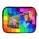 Rainbow Stitch - Apple iPad Zipper Case