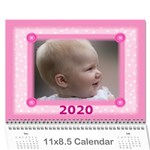 Jane Pretty in Pink 2019 (any Year) Calendar - Wall Calendar 11  x 8.5  (12-Months)