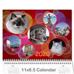 My jane 2020 - Wall Calendar 11  x 8.5  (12-Months)
