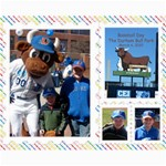 Durham Ball park 2 Collage Photos - Collage 8  x 10