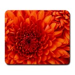 Believe In Your Dreams: Chrysanthemum flower - Large Mousepad