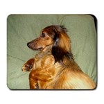 rufus - Large Mousepad