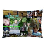 pillow case for yuriy