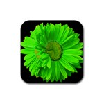 Double Painted Daisy Coaster - Rubber Coaster (Square)