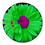 LimeGreen-Pink Painted Daisy Mouse Pad - Round Mousepad