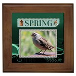 Spring Framed Tile