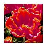 hot tulips face towel