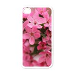 floral iphone cover - iPhone 4 Case (White)